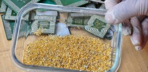 Gold waste recycling process